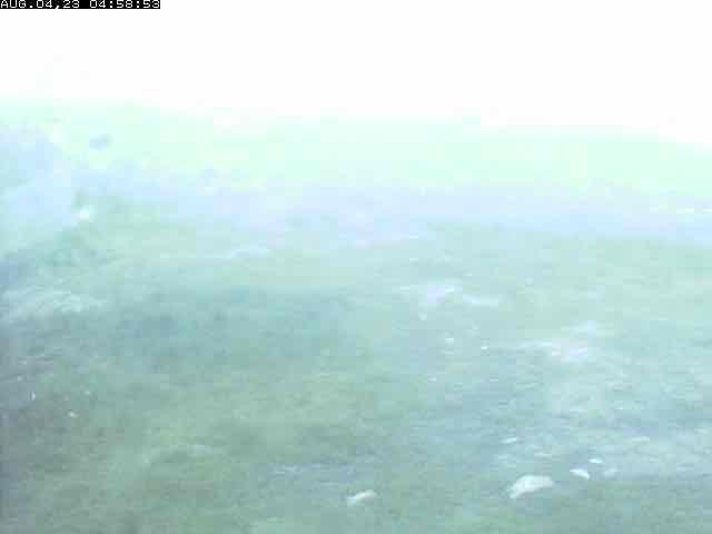 Kvamskogen - Furedalen Skizentrum (01)